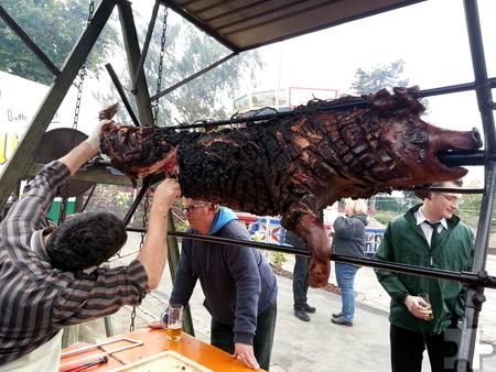 """Zur Schwerfener """"Saubrenner-Kirmes"""" gehört traditionsgemäß ein 100-Kilo-Spanferkel, das über offenem Drehgrill gebraten und Kirmessonntag um 12 Uhr angeschnitten wird. Foto: Privat/pp/Agentur ProfiPress"""