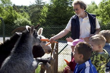 Tierschutzvereinsvorsitzender Reiner Bauer mit jungen Trödelmarktbesuchern bei der Viehfütterung. Archivfoto: pp/Agentur ProfiPress