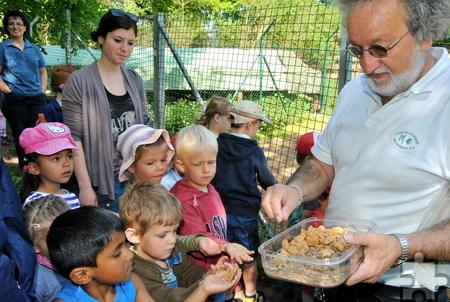 Reiner Bauer vom Tierschutzverein Mechernich verteilt Leckerbissen für die Ziegen, die die Kinder verfüttern durften. Foto: Renate Hotse/pp/Agentur ProfiPress
