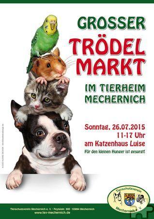 Am Sonntag, 26. Juli, findet am Katzenhaus Luise auf dem Gelände des Tierheims Mechernich von 11 bis 17 Uhr ein Trödelmarkt zugunsten der dort versorgten Tiere statt. Foto: Veranstalter/pp/ProfiPress