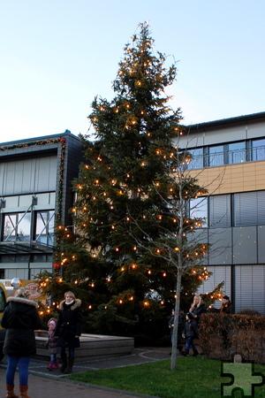 Im Lichterschein glänzt der große Weihnachtsbaum vor dem Rathaus. Foto: Paul Düster/pp/Agentur ProfiPress