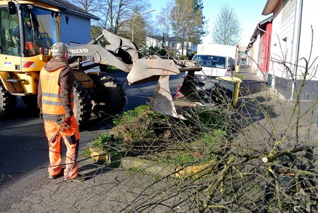 Beim Aufpeppen vernachlässigter Grünflächen in der Bergstraße kamen jetzt vereinzelt auch Maschinen zum Einsatz. Foto: Bauhof/pp/Agentur ProfiPress