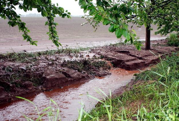 Mit den starken Regenfällen wurde fruchtbarer Boden von den Feldern in den Bestenbach geschwemmt. Für die Landwirte ist dadurch auch ein Ernteschaden entstanden. Foto: Steffi Tucholke/pp/Agentur ProfiPress