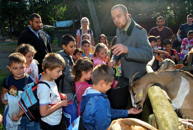 Unter der sachkundigen Führung von Wildpfleger Etienne Cousin lernten die Mechernicher Flüchtlingskinder die einheimischen Tiere kennen. Foto: Renate Hotse/pp/Agentur ProfiPress