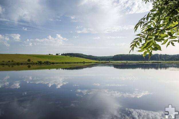 Aufgrund seiner überregionalen Bedeutung, insbesondere für Wasser- und Zugvögel, wurde der Sangweiher in das europäische Schutzgebietssystem Natura 2000 aufgenommen. Foto: Klaus-Peter Kappest/Natur- und Geopark Vulkaneifel/pp/Agentur ProfiPress