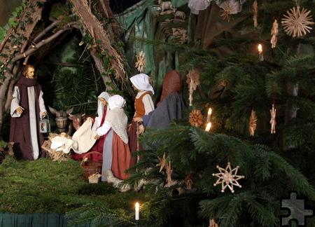 Direkt neben der Krippe, in Richtung Altar, steht der Weihnachtsbaum. Foto: Thomas Schmitz/pp/Agentur ProfiPress