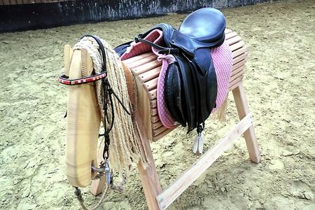 Gebrauchte Pferdeutensilien und Reitbekleidung gibt es beim ersten Reiter-Nacht-Flohmarkt am Freitag, 30. Dezember, von 18 bis 24 Uhr auf dem Eickser Gestüt Rosenhof. Foto: Privat/pp/Agentur ProfiPress