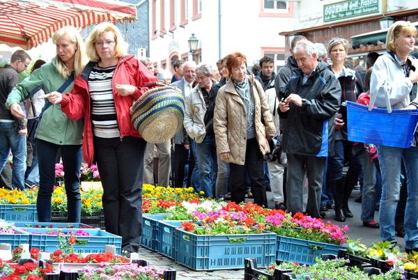 Die Qual der Wahl haben die Besucher beim Blumen- und Kleintiermarkt am Sonntag, 14. Mai, 11 bis 18 Uhr, in Kommern. Archivfoto: Alice Gempfer/pp/Agentur ProfiPress